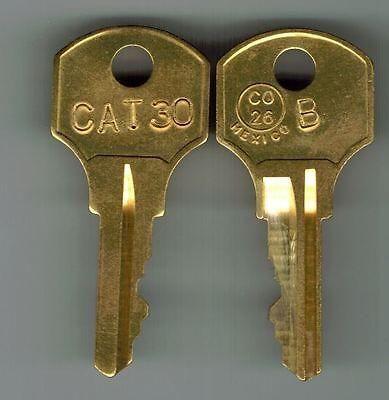 GE Security Interlogix CAT30KEY Replacement Keys CAT30KEY by Interlogix