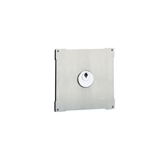 Comelit 3178 Vandalcom Stainless Steel Traditional PTT Module 3178 by Comelit